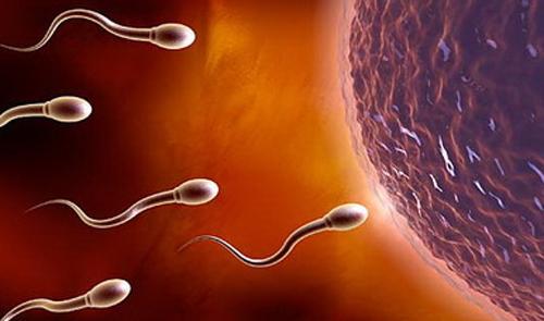 不良心理影响男性精子健康