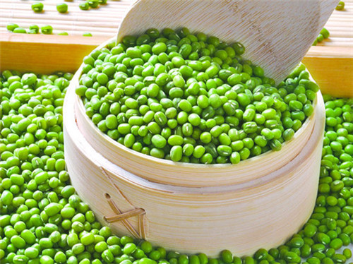 绿豆让你远离湿疹困扰!