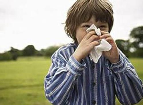 10招,轻松预防鼻窦炎