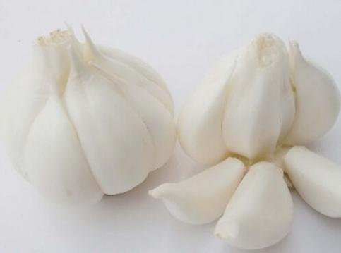 大蒜、酸奶能够让女性远离阴道炎