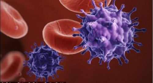 日本瞒不住了:日企所产血液药品或致使用者感染艾滋病