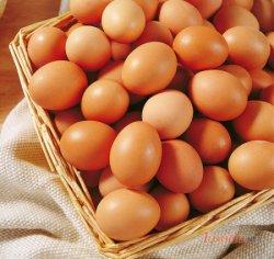 鸡蛋吃多了会怎么样,女性每天吃蛋过多恐引起乳癌
