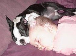 一到三岁宝宝晚上应该跟妈妈一起睡觉才能保证发育更好