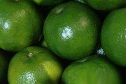 吃煮熟橘子的好处可以顾脾胃养生增加食欲