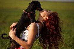 女人和狗亲吻接触不幸丧命 女人和狗交配事件