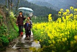 雨水增多 四类人群易犯病